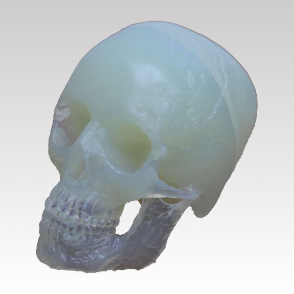 3Dプリンター造形出力サービスサンプルForm2作品NO.17